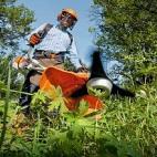 Kosy mechaniczne do pielęgnacji dużych terenów zielonych
