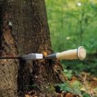 Technika leśna